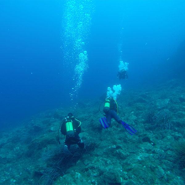 Discover Scuba Pantelleria Diving Sub DiveX