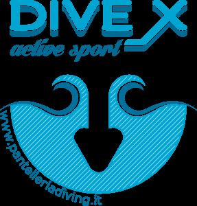 diveX Logo
